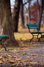 Preview iPhone wallpaper Park, walkway, bench, trees, autumn