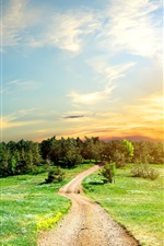 Preview iPhone wallpaper Road, trees, grass, sky, clouds, sunset