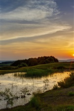 Preview iPhone wallpaper Sunset, pond, grass, trees