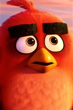 Preview iPhone wallpaper Angry Birds cartoon movie