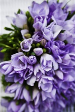 Preview iPhone wallpaper Blue flowers, bouquet, tulips