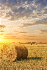 Preview iPhone wallpaper Farm field, grass, hay, sunset, clouds