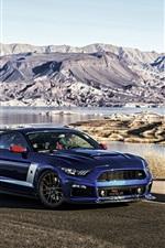 iPhone fondos de pantalla Etapa Ford Mustang Roush 3 coche azul