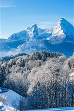 Preview iPhone wallpaper Germany, Bavaria, Alps, winter, snow, mountains, trees, house