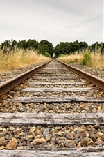 Preview iPhone wallpaper Railway, grass, trees, stones