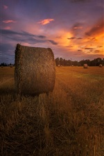 Preview iPhone wallpaper Summer, sunset, field, hay, dusk, red sky
