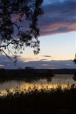 Australia, grass, trees, sky, clouds, river, dawn, water reflection