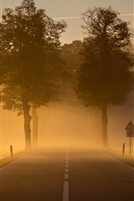 Preview iPhone wallpaper Dawn, morning, town, road, fog