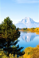 Preview iPhone wallpaper Grand Teton National Park, Wyoming, USA, trees, lake, mountains