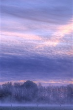 Preview iPhone wallpaper Morning, dawn, sunrise, clouds, fog, trees
