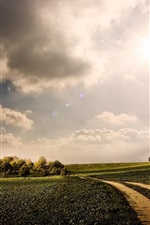 Preview iPhone wallpaper Nature, green fields, path, trees, sunshine, clouds