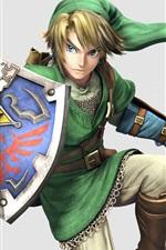 The Legend of Zelda, jogo japonês