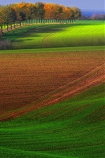 Preview iPhone wallpaper Autumn farm field, trees, green and brown, beautiful scenery