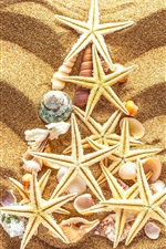 Preview iPhone wallpaper Beach, sands, seashells, starfish, Christmas tree