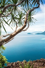 iPhone fondos de pantalla Hermosa costa, mar, arbustos, piedras, Malasia, Bohey Dulang Island