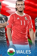 Preview iPhone wallpaper EURO 2016 Wales, PES 2016 game