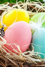 Preview iPhone wallpaper Easter Eggs, colorful, nest, flowers, spring