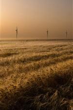 Preview iPhone wallpaper Field, windmills, nature, grass, sunset
