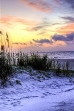 Preview iPhone wallpaper Hilton Head Island, South Carolina, USA, beach, grass, sea, sunset