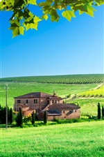 Preview iPhone wallpaper House, grass, green field, leaves, sun, summer