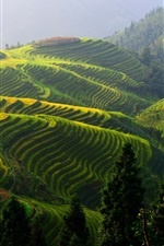 Preview iPhone wallpaper Longji rice terraces, China beautiful countryside