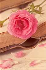 미리보기 iPhone 배경 화면 핑크 꽃, 사랑의 마음, 책을 장미