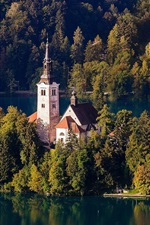 Slovenia, Lake Bled, Church, island, trees