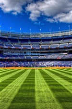 Preview iPhone wallpaper Sport stadiums, football, lawn