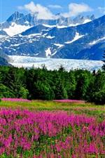 Preview iPhone wallpaper USA, Alaska, mountains, snow, flowers, grass, forest