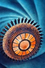 imagem Abstração, cores, como uma flor