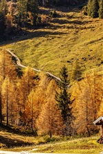 Preview iPhone wallpaper Bavaria, Germany, beautiful autumn, road, house, forest, mountains