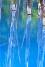 Preview iPhone wallpaper Blue Pond, trees, water reflection, Japan
