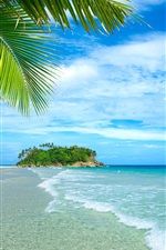 Preview iPhone wallpaper Blue sea and sky, beach, coast, palm trees, tropical, water