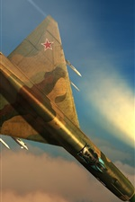 Preview iPhone wallpaper DCS World, flight simulator, MiG-21 multipurpose fighter