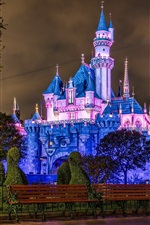 Preview iPhone wallpaper Disneyland, castle, blue style, night