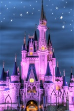 Preview iPhone wallpaper Disneyland, castle, night, lights, stars, purple style