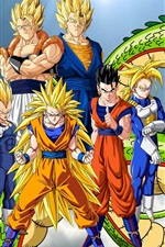 Preview iPhone wallpaper Dragon Ball Z, anime widescreen
