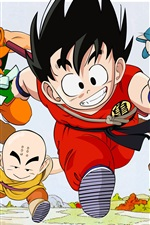 Preview iPhone wallpaper Dragon Ball, classic anime