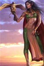 Gryphon senhora, duende, guerreiro, pássaros, por do sol, menina da fantasia