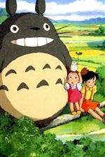 Hayao Miyazaki, Meu Vizinho Totoro, campo bonita
