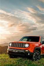 Jeep Renegade, red color, grass, sunset