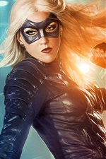 Preview iPhone wallpaper Katie Cassidy as Black Canary, Arrow TV series