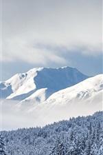 Kenai Montanhas, árvores, neve espessa, floresta nacional de Chugach, Alaska, EUA