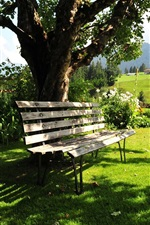 Preview iPhone wallpaper Kitzbuhel, Austria, summer, trees, bench, grass