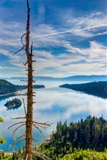 Preview iPhone wallpaper Lake Tahoe, California, USA, top view, forest