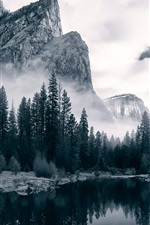 Preview iPhone wallpaper Merced River, Yosemite National Park, river, valley, trees, dawn, USA