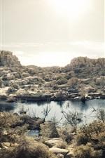 Preview iPhone wallpaper Mojave Desert, lake, grass, rocks, Joshua Tree National Park, California, USA