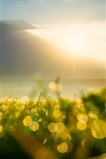 Preview iPhone wallpaper Mountain, sun rays, sunrise, grass, dew, flare, bokeh