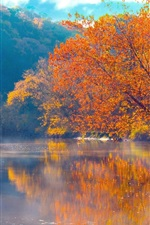 Preview iPhone wallpaper Mountains, river, trees, fog, morning, beautiful autumn