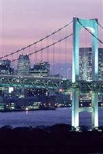 Rainbow Bridge, dusk, skyscrapers, lights, Tokyo, Japan